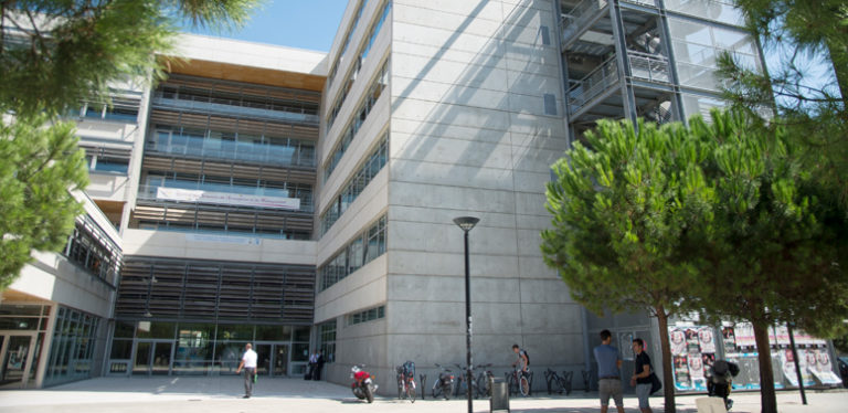 licence-pro-commerce-montpellier